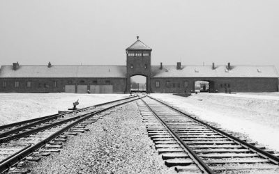 The final solution (75 jaar bevrijding Auschwitz)
